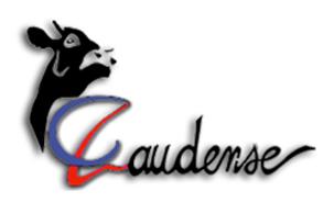 http://www.laudense.net/